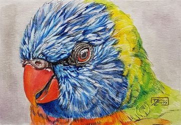 World Watercolor Month - Day 3 (Rainbow Lorikeet) by Harmony1965