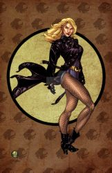 Black Canary by Drew Johnson by StephenSchaffer