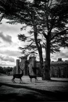 Scone Palace by Daniel-Wales-Images