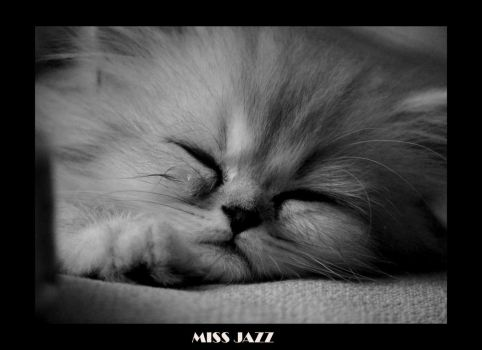 MISS JAZZ by cemito