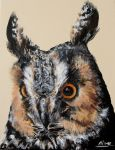 Long Eared Owl painting FOR SALE by Merciap