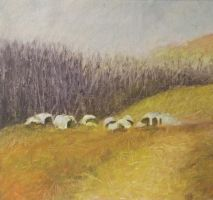 Hayfield 2000 by timbroadwater