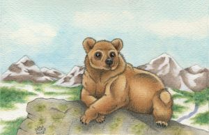 Mountain bear by Sarosna85