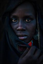 Arbore by dam-yan