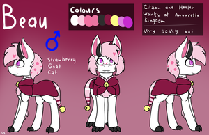 (Commission 103) Beau Ref Sheet by Serenea-Artz