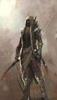 assassin by artcobain