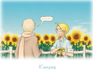 Kansas by tafkae