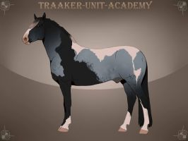 Traaker import 161 | Orchidor by Pashiino