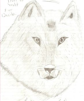 Wolf by Racso64