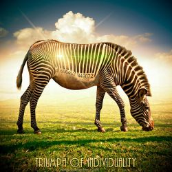 Triumph of Individuality by inObrAS