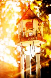 Birdhouse at Sunset by picturesarelife