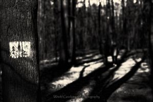 Sign by swiftach