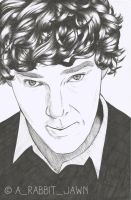 Benedict Cumberbatch by Arabbitjawn