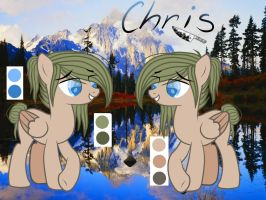 Chris Reference Sheet by Molly--Star666