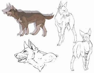 Concept Art Cerberus by Dimension-Chronicles
