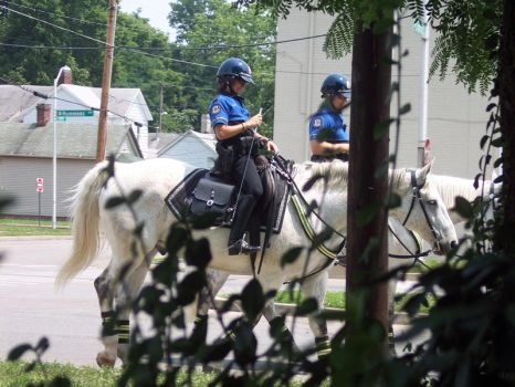 police on horses by Midnightflaze