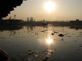 Afternoon at Dal lake by phoenix1584