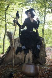 Stock - Halloween special witch sitting on tree by S-T-A-R-gazer