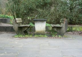 Overgrown Seat by nwinder