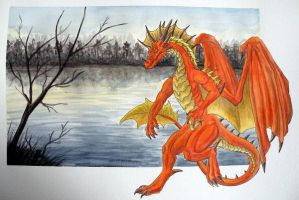 Walking on the lake side by Psydrache