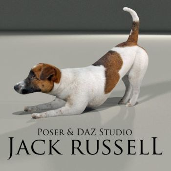 FREE Jack Russell for Poser and DAZ Studio by adamthwaites