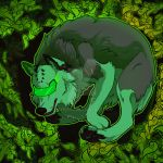YCH Decay. by StarkHolmes