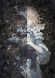 Butterfly Dream 02 by ChinAnime