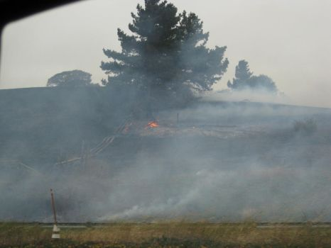 grass fires by silverarrows13
