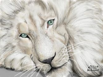 White_lion_realistic_drawing by Espriz