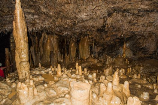 Caves of King Mark 2 by Pedrojme