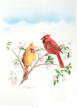 Cardinals by Duncan-Eagleson