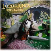 The Lord of the Rings Frodo by Barkingmadd