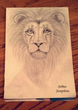 Lion by Selma-Josephine