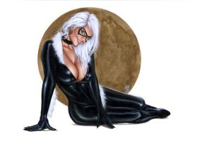 Black Cat Bw023 by AlexMirandaArt