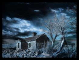 the house by swampy
