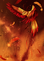 Phenix by Lily-Fu