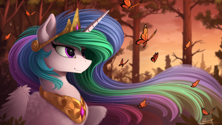 Last ray of the day by Yakovlev-vad