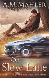 Book: The Slow Lane by LaercioMessias