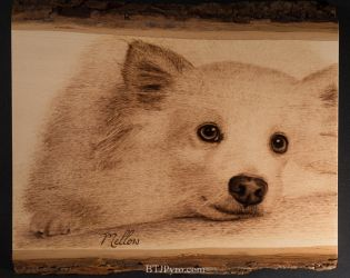 Pyrography Portrait of a Dog by brandojones