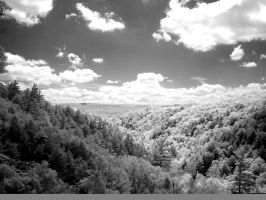 black and white infrared view by ilimel