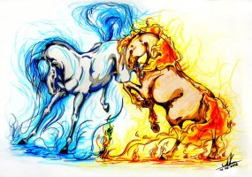 fire and water elements by silvena