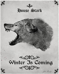 Winter Is Coming by Julio-Lacerda