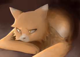 Mapleshade's Sorrow by Hibiscats