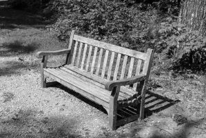 Old Bench by AdamHoltPhotography