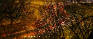 Traffic and Trees by Storm-Boy