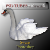psd swan tubes with mask by feniksas4
