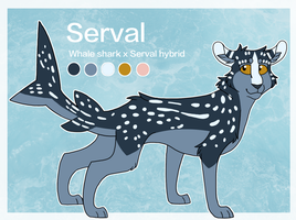 Official Serval Reference Sheet by servalshark