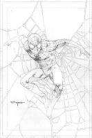 Spidey pencils by aethibert