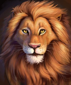 lion by swdd-cat