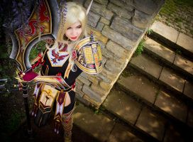 Bloodelf Paladin - World of Warcraft by KamuiCosplay